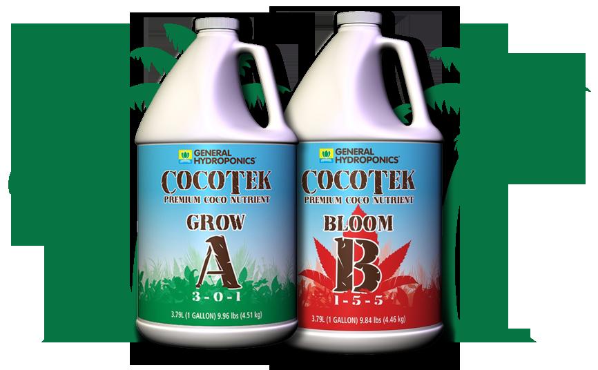 BOGO Sale in CocoTek Products